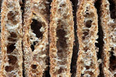 Bread crisps — Stock Photo