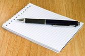 Notebook en pen — Stockfoto