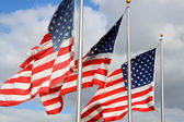 American flags in the wind — Stock Photo