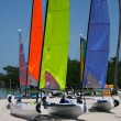 Catamaran sailboats — Stock Photo