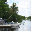 Waterway into Everglades — Stok Fotoğraf #2079122
