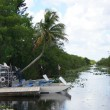 Stock Photo: Waterway into Everglades