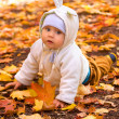 The baby in autumn park — Stock Photo #2132286