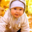 Stock Photo: The baby in autumn park