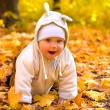 The baby in autumn park — Stockfoto