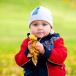 The baby in autumn park — Stock Photo #2132342