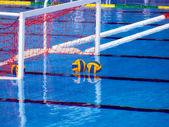 Waterpolo — Foto Stock