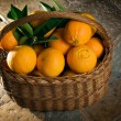 Stock Photo: Basket of oranges