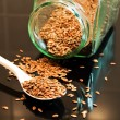 Stock Photo: Flax seed