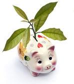 Ecology savings — Stock Photo