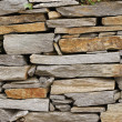 Stone wall — Stock Photo #2058960