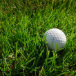 Golf ball on a grass - Stock Photo