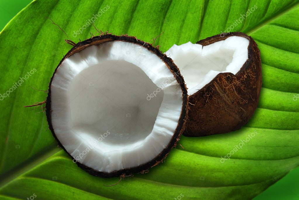 Fresh coconut on a green palm leaf, clipping path included — Stock Photo #2598650