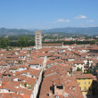 Lucca — Stock Photo