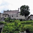Hohenwerfen Castle, Austria — Stock Photo