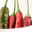 Chilli peppers — Stock Photo