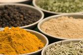 Verschillende spice kommen — Stockfoto