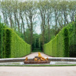 Stock Photo: Versailles Garden, France