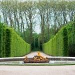 Versailles Garden, France — Stock Photo