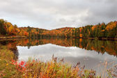 Fall Colors by the Lake — Stock Photo
