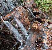 Waterfall in the Woods — Stock Photo