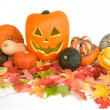 Halloween Arrangement — Stock Photo