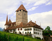 Spiez Castle, Bern Canton, Switzerland — Stock Photo