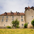 Foto Stock: Gruyeres Castle, Switzerland