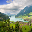 Canton of Fribourg, Switzerland — Stock Photo