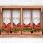 Old European Wooden Windows — Stock Photo