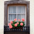 Old European Wooden Window — Photo