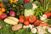Vibrant Produce Closeup — Stock Photo