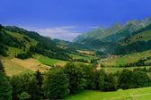 Perto de Gruyères, Suíça — Fotografia Stock