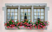 Old European Windows — Stock Photo