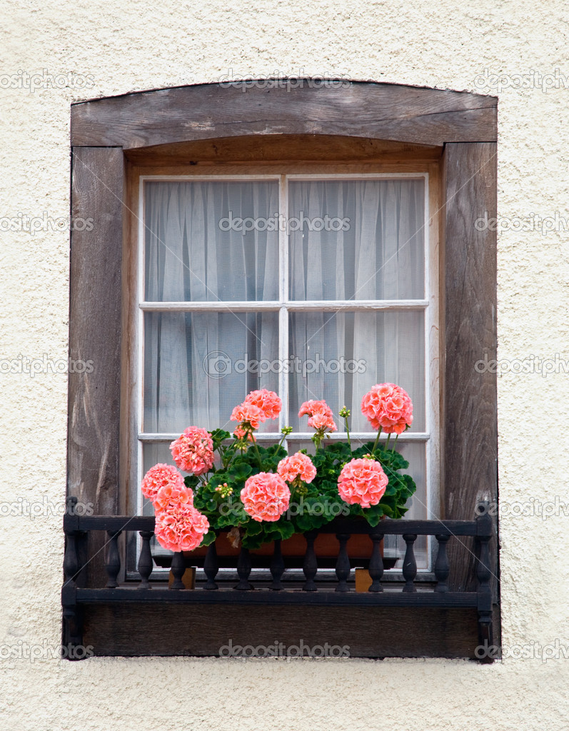 Old European wooden window with flowers. — Stock Photo #2372896