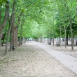 Jardin du Luxembourg, Paris, France - Stock Photo