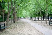 Jardin du Luxembourg, Paris, France — Stock Photo