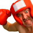 Boxer — Stock Photo #2393597