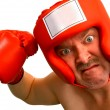 Stock Photo: Boxer