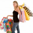 Young Woman on a Shopping Spree - Stock Photo