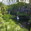 Stock Photo: Seven Sacred Pools, Hawaii
