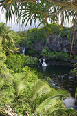 Seven Sacred Pools, Hawaii — Stock Photo