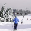 Downhill Skiing - Stock Photo