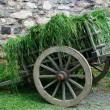 18th Century Hay Cart — Stock Photo