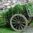 18th Century Hay Cart — Stock Photo #2406997