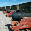 Old Cannons - Stock Photo