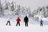 Экстремальные холодного лыжи — Стоковое фото