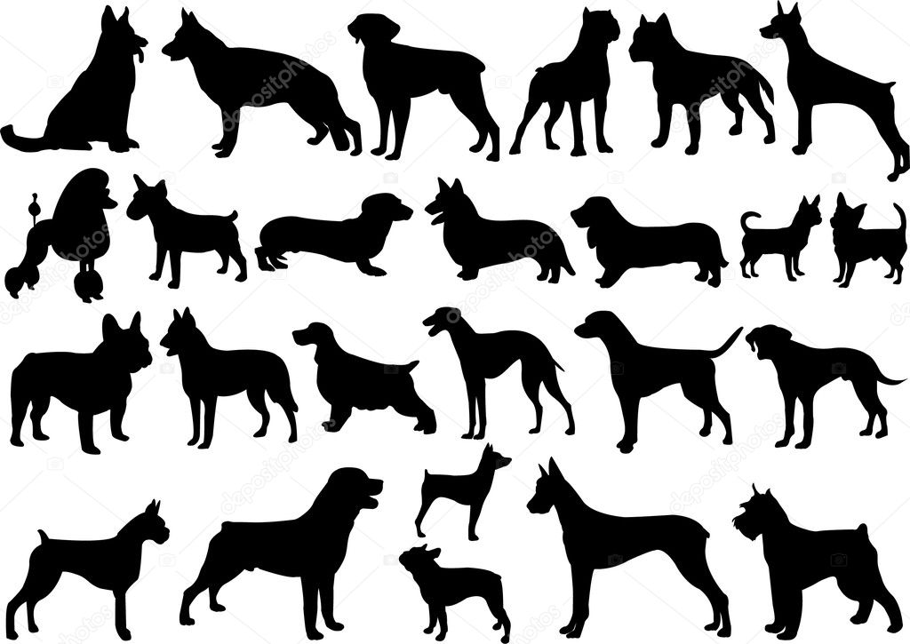 Dogs silhouettes collection - vector — Stock Vector #1982225