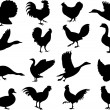Poultry silhouettes — Stock Vector #2004463