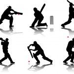 Постер, плакат: Cricket players